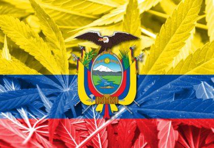 Ecuador autoriza el uso de cannabis medicinal